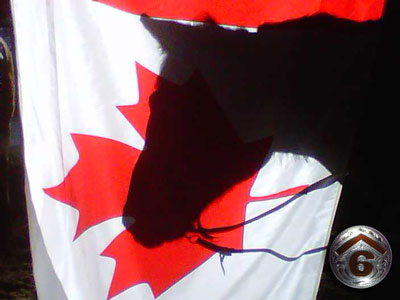 Canada Flag & Kokanee's Shadow